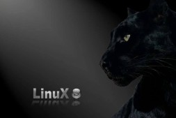 linux服务器无法ping通问题的解决